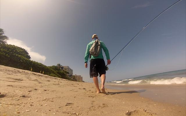 Florida surf